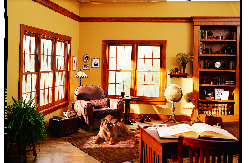 Renewal By Andersen Double Hung Windows, Traditional Living Room